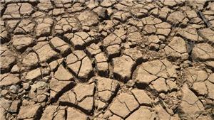 Vùng Nam California trải qua tình trạng nắng nóng và khói bụi nghiêm trọng chưa từng có