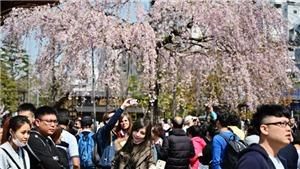 Tokyo được xếp hạng thành phố an toàn nhất thế giới