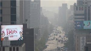 Hàn Quốc đề xuất các biện pháp nhằm giảm bụi mịn