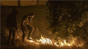 Mỹ: 100.000 người phải sơ tán vì cháy rừng lan rộng ở bang California