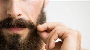 Truyện cười: Bộ râu dài nhất thế giới