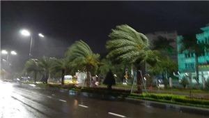 Tin cuối cùng về bão số 5: Các tỉnh từ Thừa Thiên - Huế đến Bình Định mưa to đến rất to