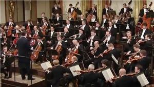 Những tác phẩm đã đưa vào vũ trụ (kỳ 3) - Âm nhạc Beethoven: Cảm xúc 'cực đại' của con người