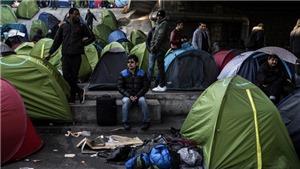 Gần 5 triệu người đã nhập cư trái phép vào châu Âu