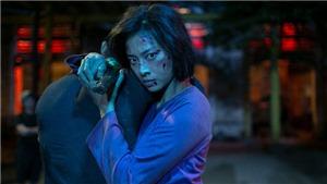 Liên hoan phim Việt Nam lần thứ 21: Đi tìm 'Bông sen vàng'