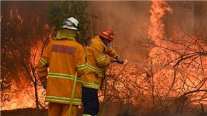 Tình nguyện viên chữa cháy Australia cố tình gây một loạt vụ cháy