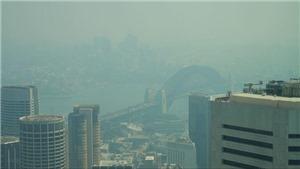 Thành phố Sydney đối mặt tình trạng khẩn cấp y tế do khói mù