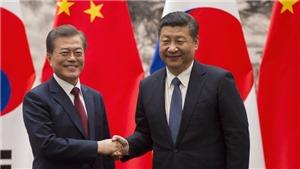 Lãnh đạo Hàn - Trung thảo luận về Triều Tiên
