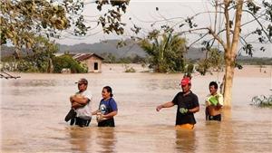 VIDEO: Bão Phanfone gây thiệt hại lớn tại Philippines