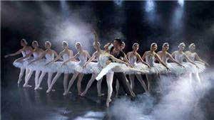 Ballet 'Hồ Thiên Nga' sẽ trình diễn trên sân khấu ngoài trời