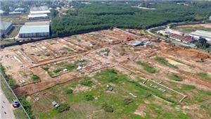 Thu hồi gần 1.800 ha đất trồng cao su để thực hiện dự án sân bay Long Thành