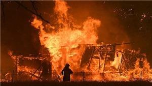 CHÍNH THỨC: những người thiệt mạng trong vụ cháy ở ngoại ô Moskva là công dân Việt Nam