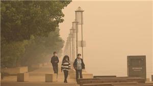 Cháy rừng tại Australia: Đám khói bụi 15km phát tán khắp nơi trên thế giới