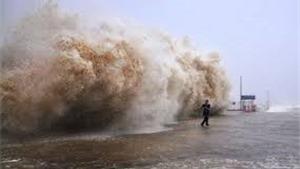 Truyện cười: Cơn bão lạ