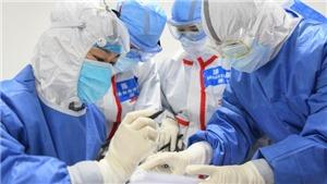 Dịch COVID-2019: Cảnh báo nguy cơ khan hiếm thuốc kháng sinh