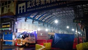 Giới khoa học Trung Quốc cho rằng nCoV không bắt nguồn từ chợ hải sản Vũ Hán
