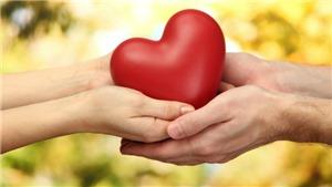 Cuộc ghép tạng lịch sử: Chung một trái tim