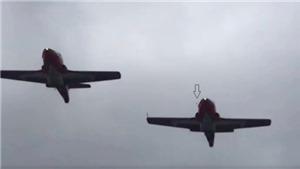 Máy bay biểu diễn của Không quân Canada rơi do một con chim