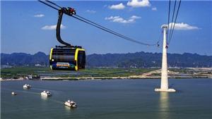 Hải Phòng sắp đưa vào hoạt động tuyến cáp có trụ cáp treo cao nhất thế giới