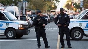 Mỹ: Hàng loạt vụ nổ súng trong ngày Quốc khánh gây nhiều thương vong