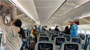 Đề nghị xác minh thông tin về việc 'nhân bản' phiếu siêu âm tim cho hơn 600 phi công, tiếp viên hàng không