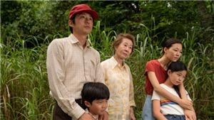 'Ứng viên nặng ký' Oscar năm 2021: 'Minari' – Lại chuyện 'giấc mơ Mỹ'