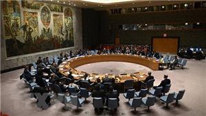 Việt Nam đặt mục tiêu tạo dấu ấn trên cương vị Chủ tịch Hội đồng Bảo an