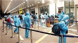 Cục Hàng không Việt Nam lên kế hoạch triển khai hộ chiếu vaccine