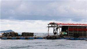 Phú Quốc - từ 'địa ngục trần gian' trở thành thành phố biển đảo đầu tiên của Tổ quốc