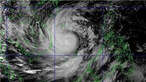 Áp thấp nhiệt đới đã mạnh lên thành bão - cơn bão số 2