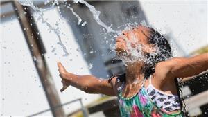 Hàng trăm người tử vong vì nắng nóng khắc nghiệt ở Mỹ và Canada