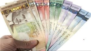 Nguyên nhân tiền mặt 'sống sót' trong đại dịch Covid-19 tại Canada