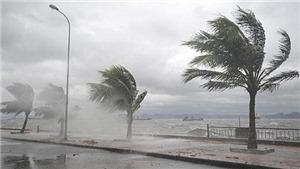 Bão Kompasu đi vào Biển Đông, trở thành cơn bão số 8 giật cấp 12