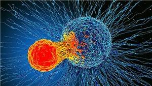 Tìm ra phương pháp mới giúp cải thiện điều trị ung thư