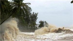 Áp thấp nhiệt đới ngay trên bờ biển tỉnh Khánh Hòa
