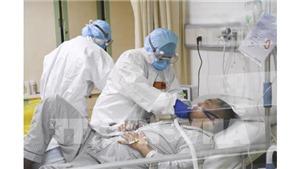 Dịch viêm đường hô hấp cấp do corona: Các chủng cũ của virus corona có thể tồn tại ngoài vật chủ tới 9 ngày
