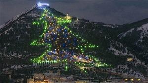 Giáng sinh 2020: Chiêm ngưỡng những cây thông Noel ấn tượng trên thế giới