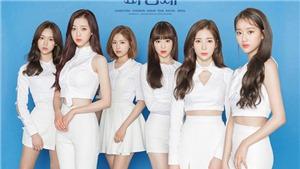 Nhóm nhạc April, những cô gái ngọt ngào của K-pop diễn tại Hà Nội