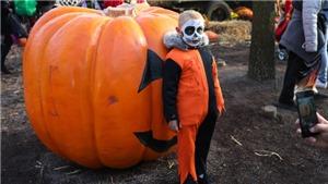 COVID-19 'dội gáo nước lạnh' lên không khí chờ đón Halloween tại Mỹ