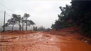 Quảng Trị: Tìm thấy 6 thi thể trong một gia đình bị vùi lấp do sạt lở núi
