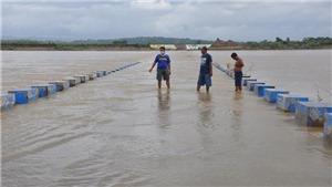 Siêu bão Goni quần thảo phía Đông Philippines, ít nhất 4 người thiệt mạng