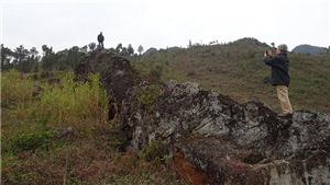 Đi tìm Công viên địa chất quốc gia và toàn cầu