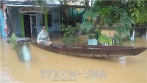 Tổng thống Putin chỉ thị chi 5 triệu USD và máy bay chở hàng viện trợ giúp Việt Nam sau bão Damrey
