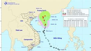 Tin mới nhất: Bão số 2 di chuyển theo hướng Bắc, vùng tâm bão gió giật cấp 11