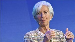 Tổng Giám đốc IMF: Phụ nữ phải được bình đẳng với đàn ông