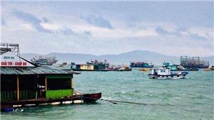 Ứng phó bão số 2: Quảng Ninh có khoảng 4 ngàn khách du lịch đã được đưa vào bờ tránh bão