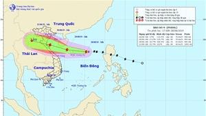 Từ đêm 29/8 đến ngày 2/9 ở Bắc Bộ, Bắc Trung Bộcó mưa to đến rất to