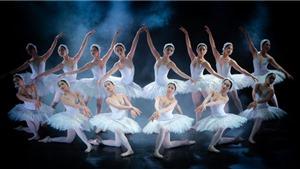 Lần đầu nghệ sỹ Việt trình diễn trọn vẹn vở ballet kinh điển 'Hồ thiên nga'