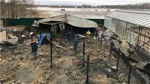Có thể có người Việt thiệt mạng trong vụ cháy nhà kính ở Nga