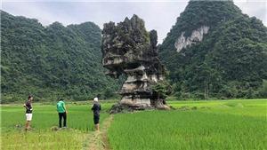 Đánh giá khảo sát Công viên địa chất toàn cầu UNESCO Non nước Cao Bằng